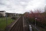 Wikipedia - Milliken Park railway station